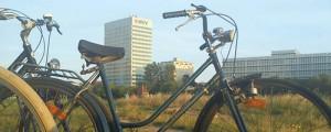 Fahrrad am Neckar